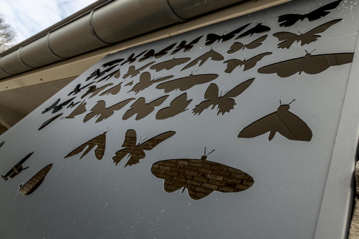 De Vlindergaard-16