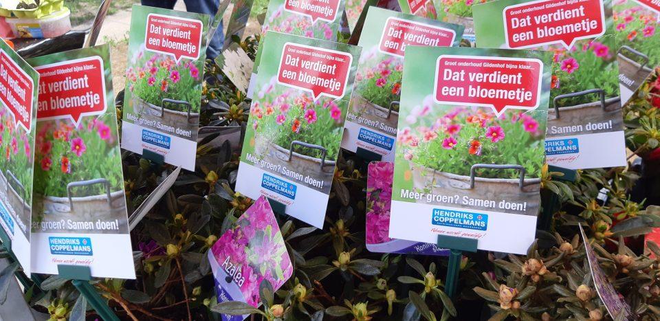 Boxtelse wijk Gildenhof verduurzaamd en verfraaid. En nu de tuin!